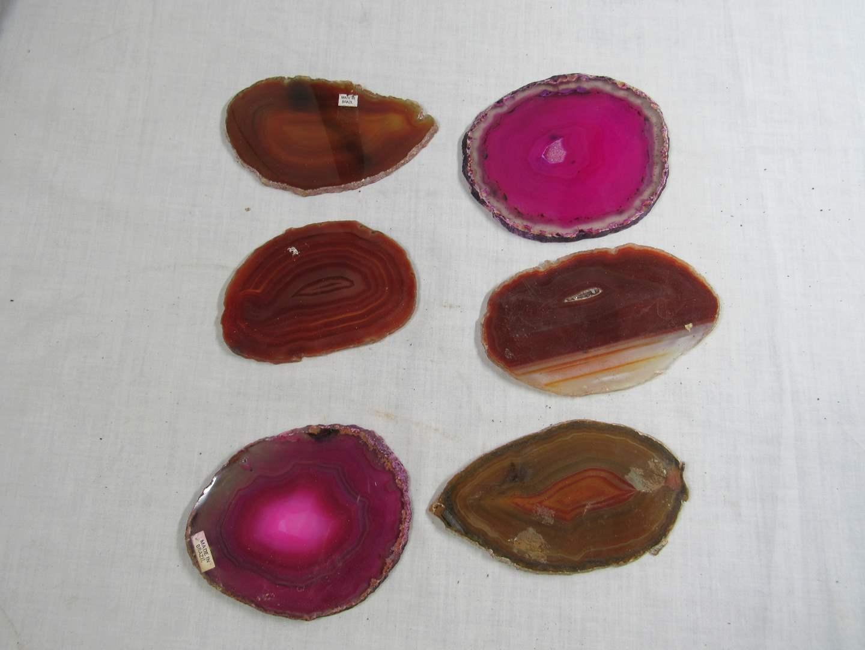 """Lot # 264  Great lot of Sliced Polished Stone agates (average 5"""") (main image)"""