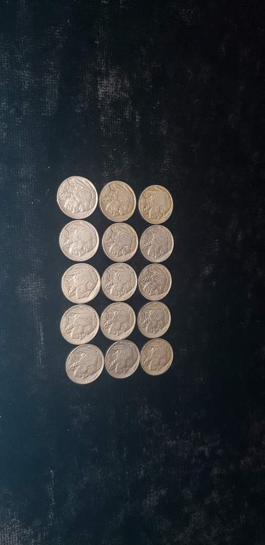 Lot # 51 (15) Buffalo Nickles - All readable dates