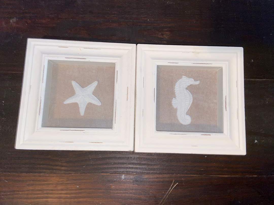 Lot # 392 Seahorse & Shell Framed Shadowbox