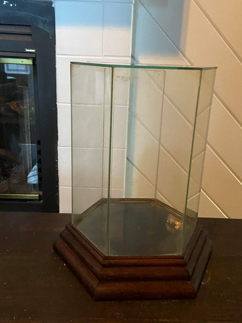 Lot # 396 Musical Glass Doll Display Case