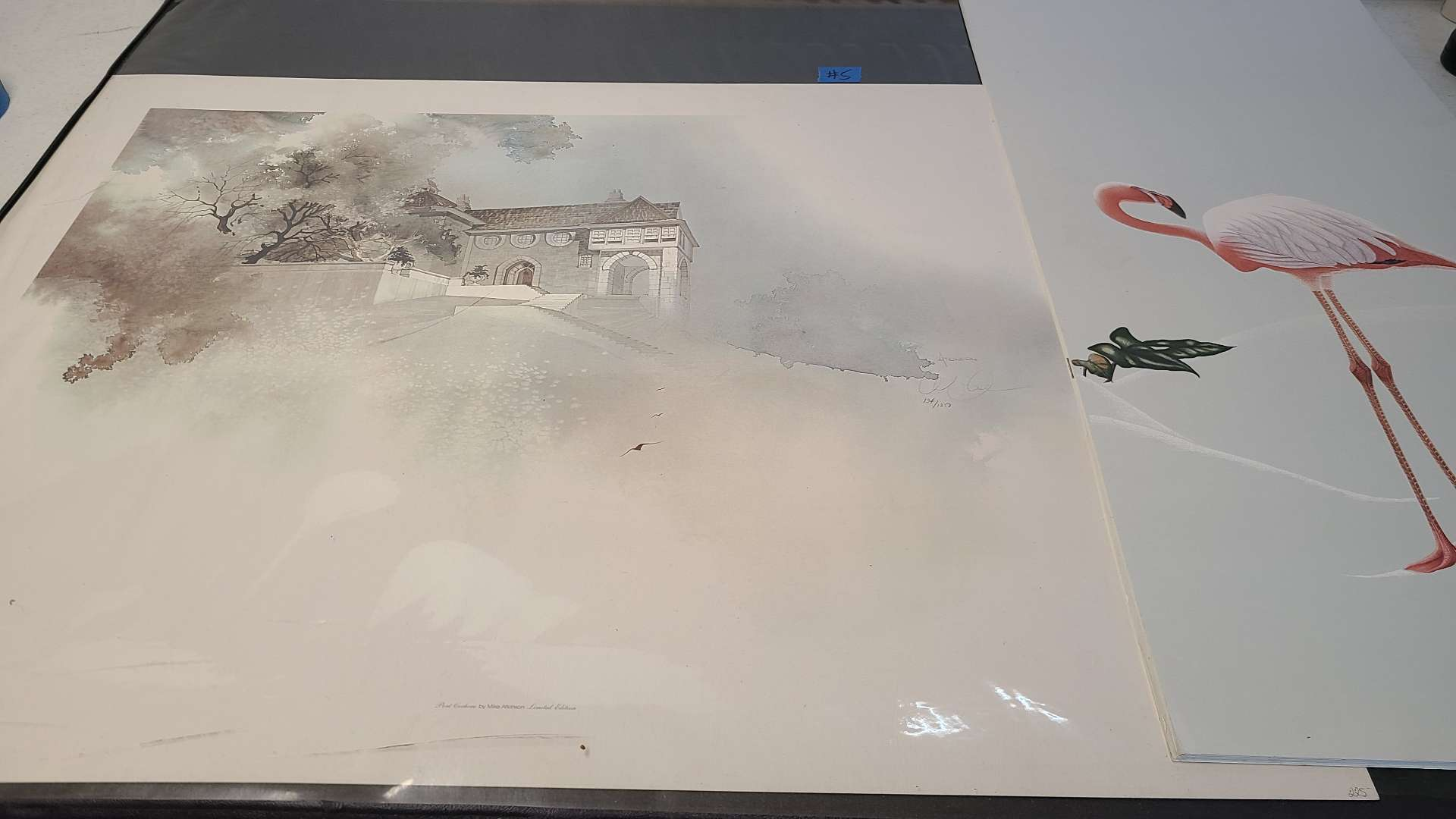 Lot # 5 Lot of 3 Pretty Signed & Numbered Lightpgraphs