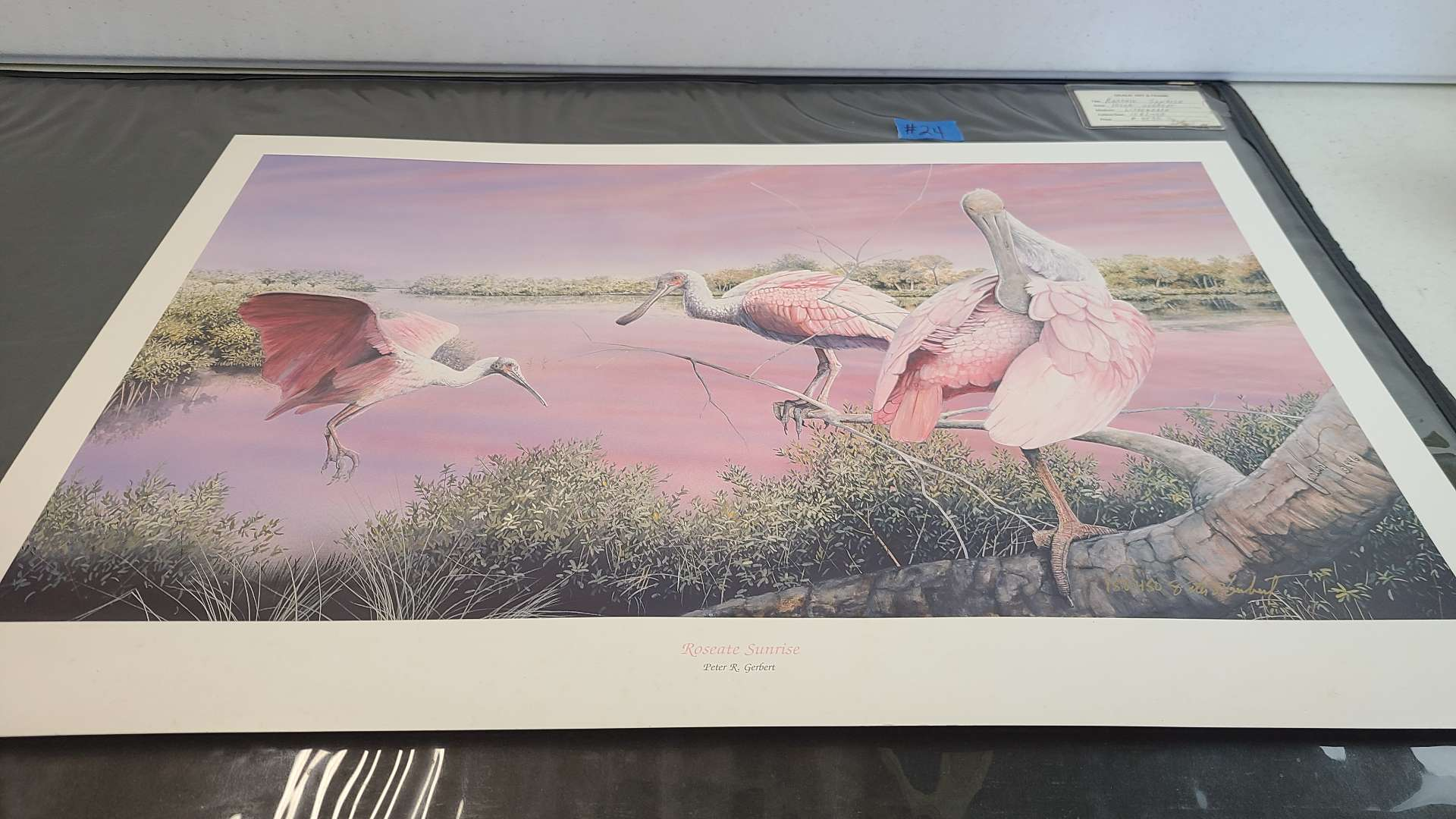 Lot # 24 Lot of 2 Bird Inspired Signed & Numbered Lithographs