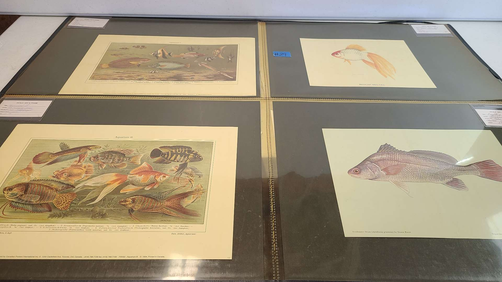 Lot # 29 Lot of 8 Small Lithographs