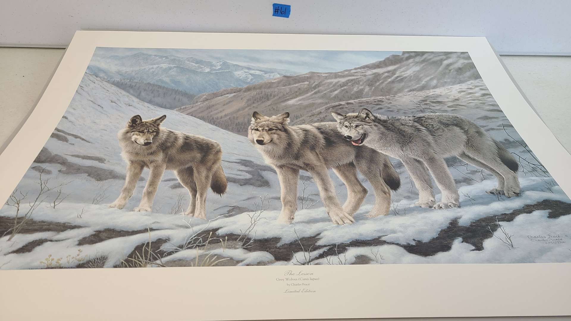 """Lot # 61 Stunning Charles Frace Limited Edition Print """"The Lesson""""-Signed & Numbered"""