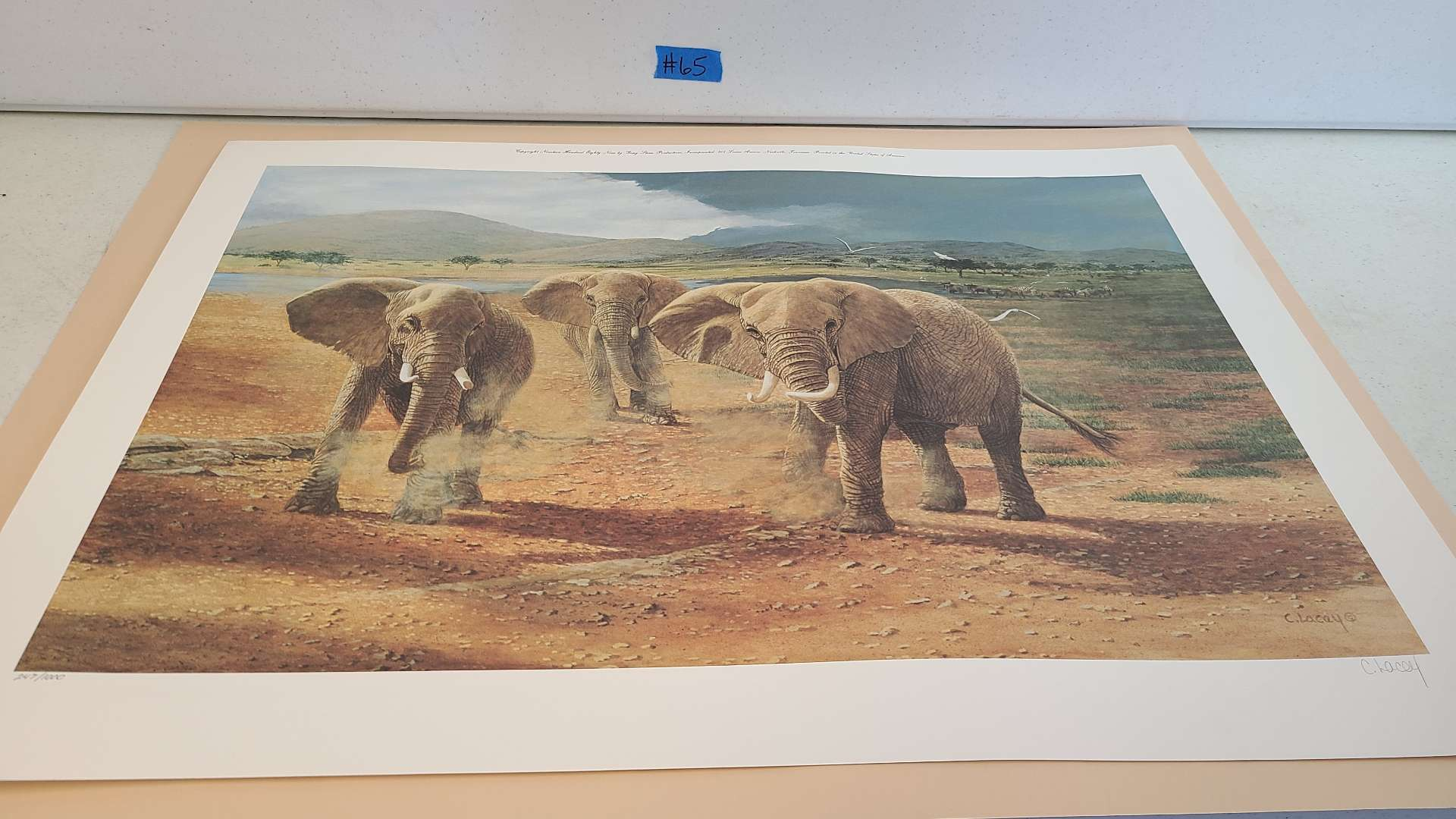 """Lot # 65 Beautiful C. Lacey """"Elephant"""" Print-Signed & Numbered"""