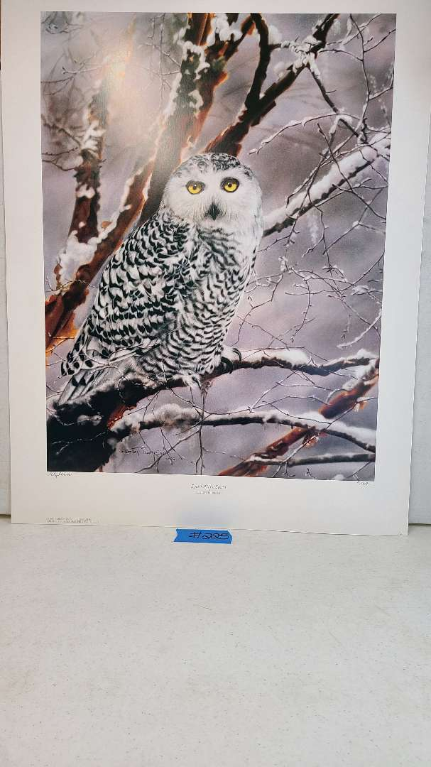 """Lot # 225 """"Eyes of the Spirit"""" by Lesley Harrison Signed & Numbered Lithograph (X2)"""