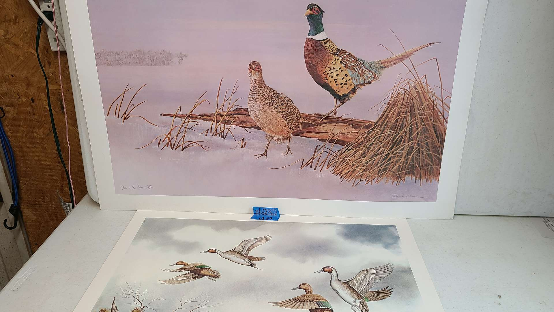 Lot # 232 Lot of 2 Bird Themed Lithographs-Signed & Numbered