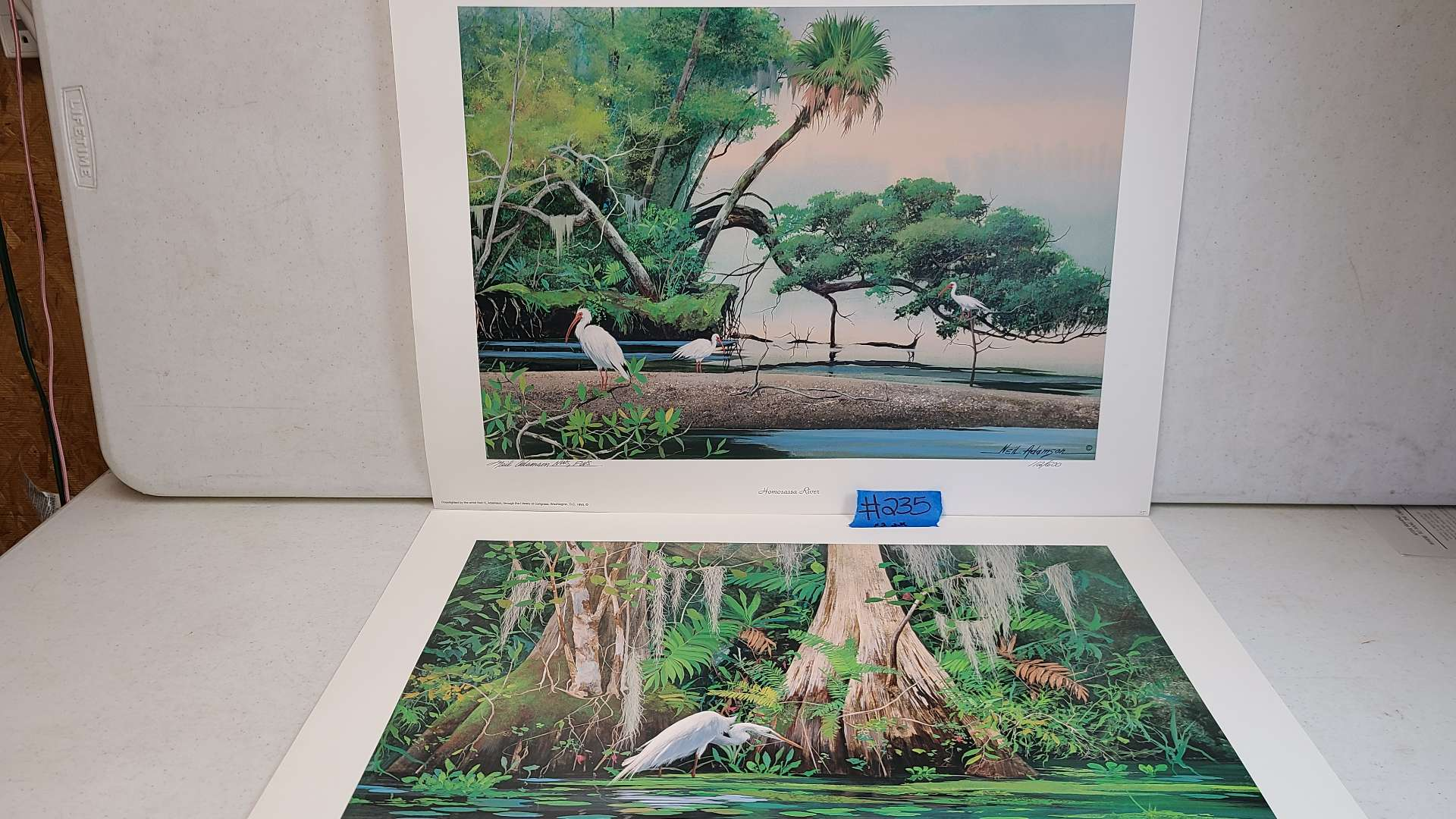 """Lot # 235 """"Everglade Cypress"""" and """"Homosassa River"""" by Neil Adamson Signed & Numbered Lithograph"""