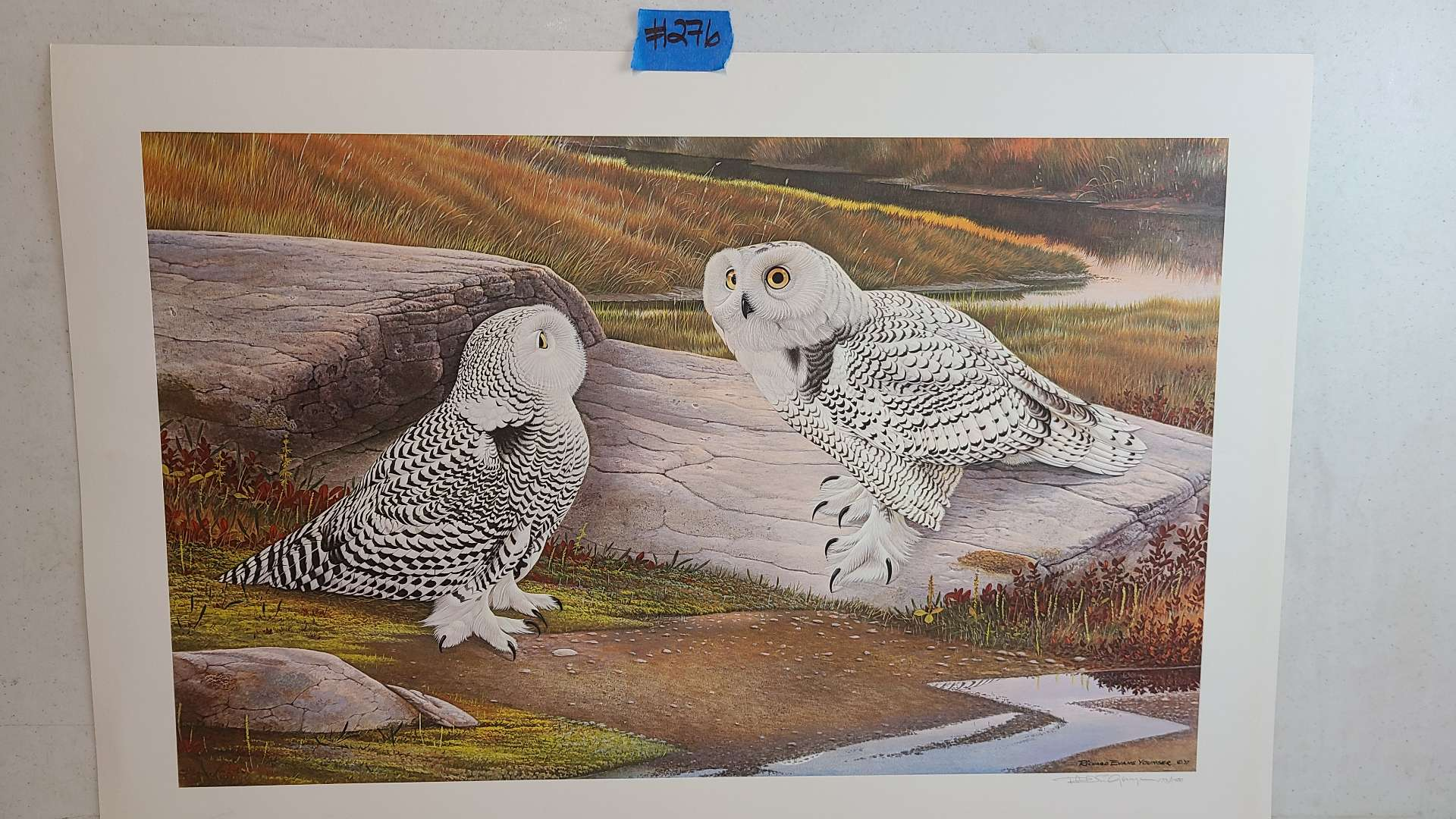 """Lot # 276 """"Snowy Owl"""" By Richard Younser Signed & Numbered Lithograph"""