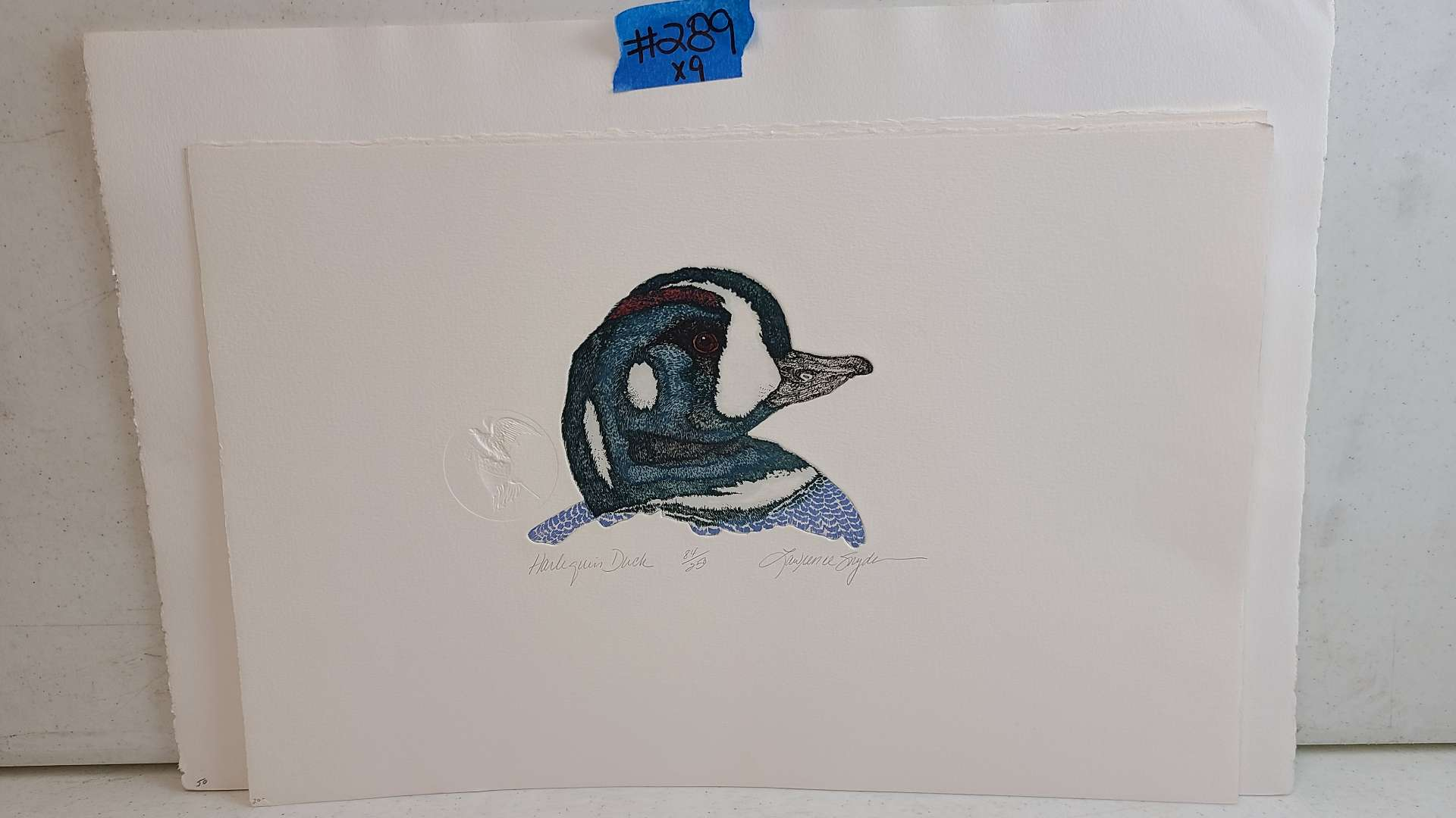 Lot # 289 Signed & Numbered Duck Lithograph