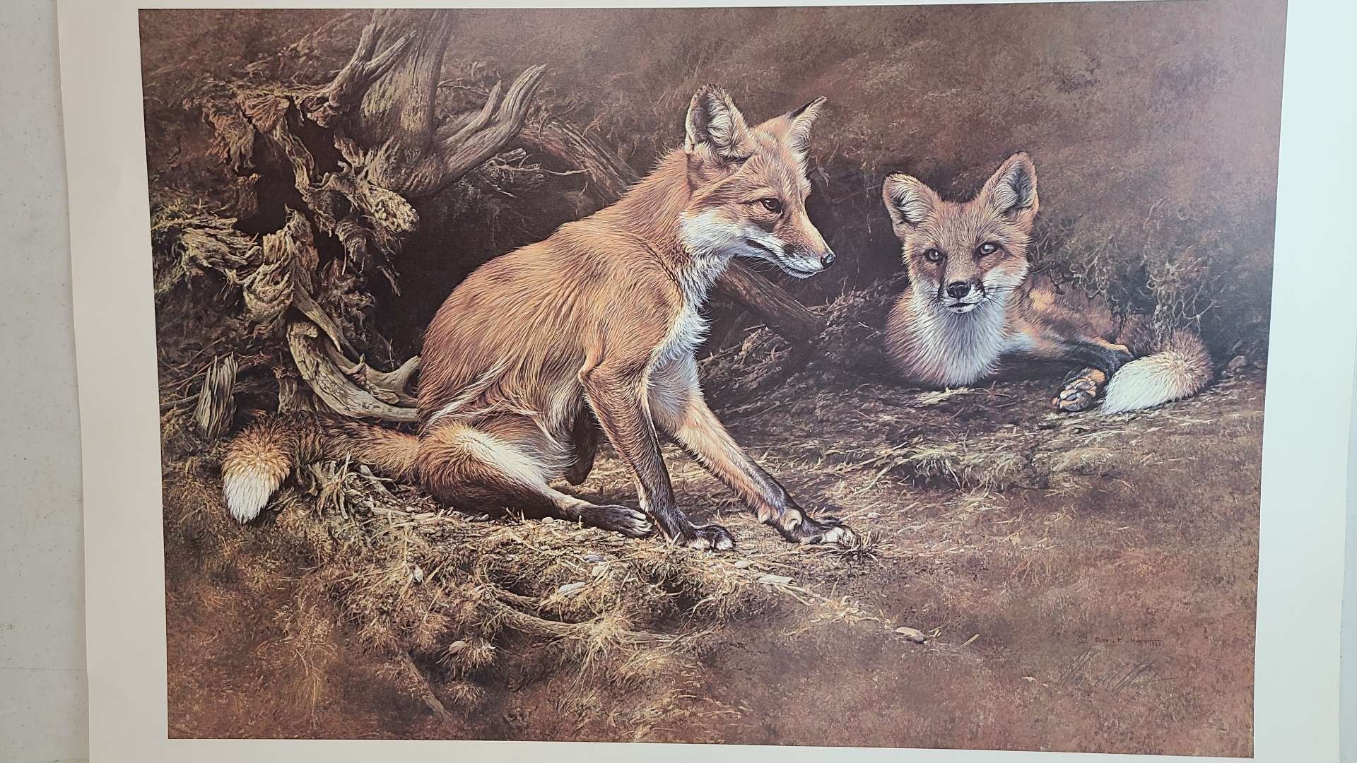 Lot # 308 Vixen & Friend By Alan Hunt Signed and Numbered