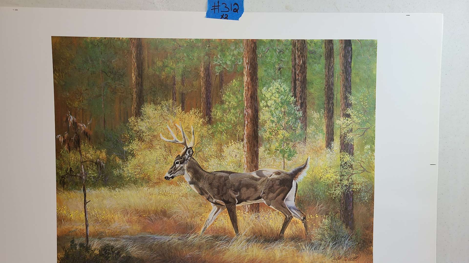 Lot # 312 Deer Signed & Numbered Lithograph