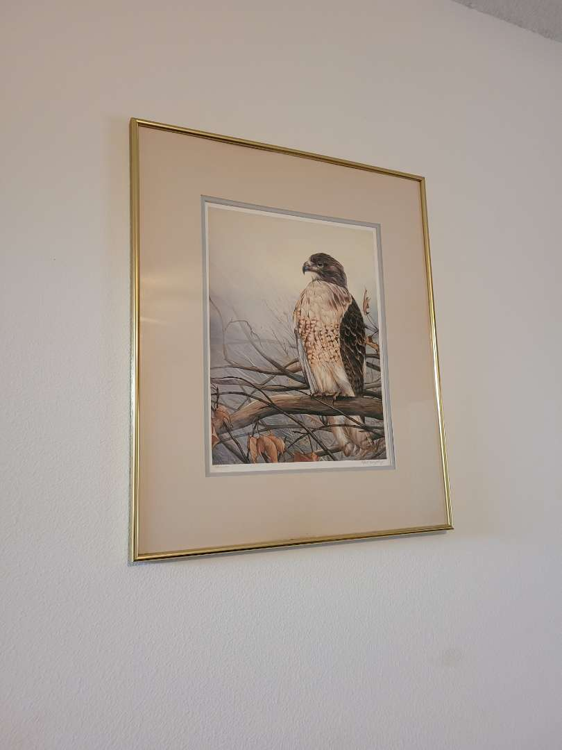 Lot # 3 Numbered Signed & Resigned Hawk Print by Paul Harpley #1253/3000