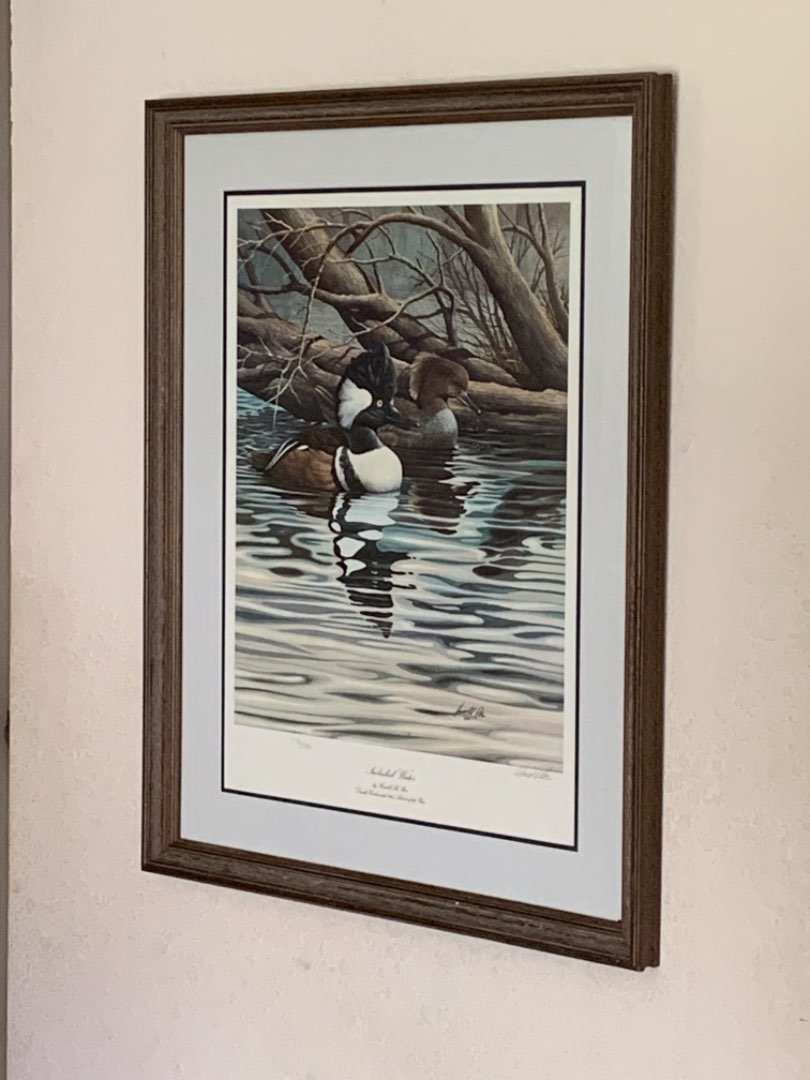 """Lot # 221 Huge Numbered & Signed Harold Roe """"Secluded Water"""" Ducks Unlimited Artist Of Year. See Below"""