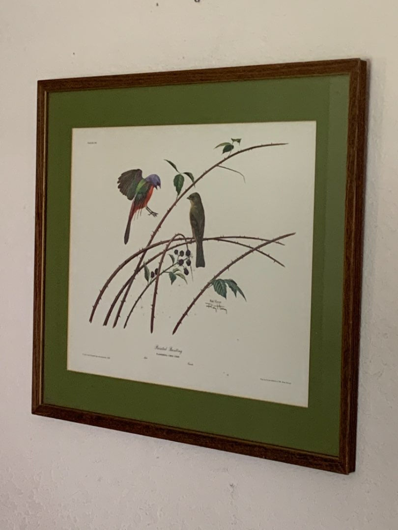 """Lot # 225 Signed Ray Harm """"Painted Bunting"""" Wildlife Art 1963. See Below"""