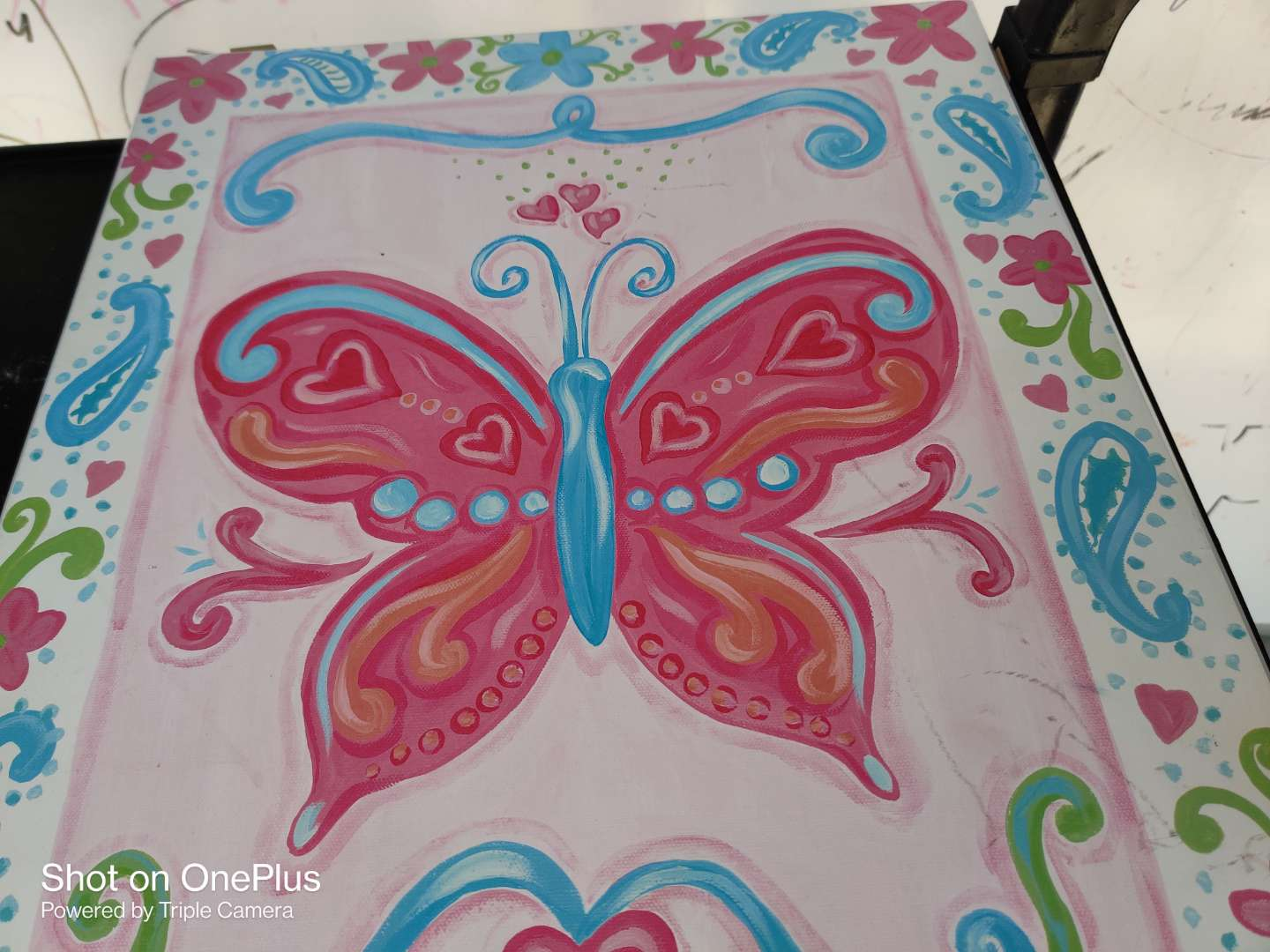 445 beautiful butterfly picture 16x20