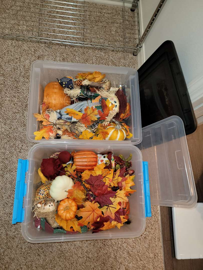 Lot # 178 (2) Totes of Fall Decorations