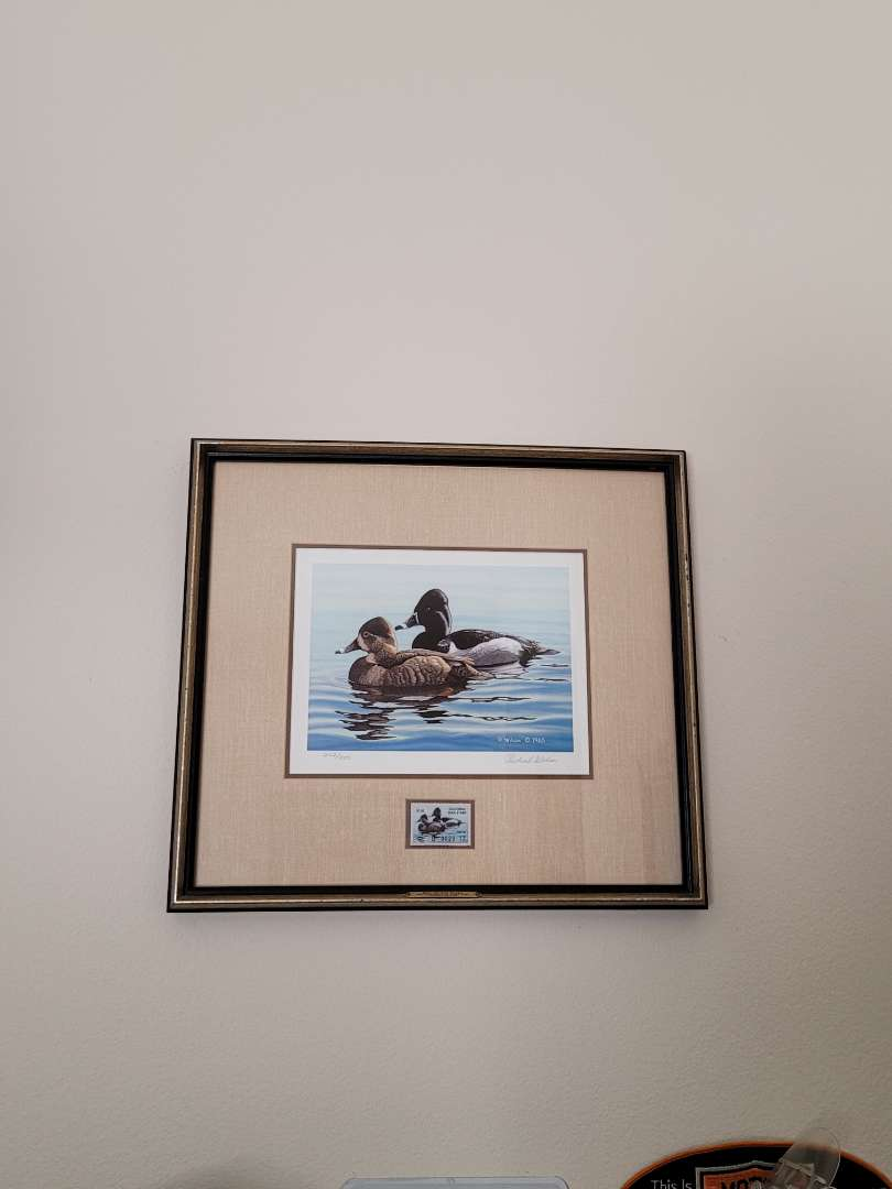 Lot # 212 Framed & Matted 1985 California Duck Stamp Print - Signed & Numbered - Richard Wilson- 242/950