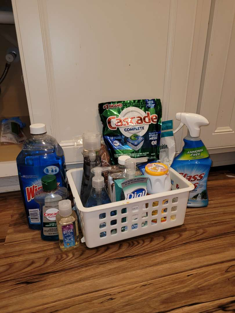 Lot # 260 Cleaning Supplies