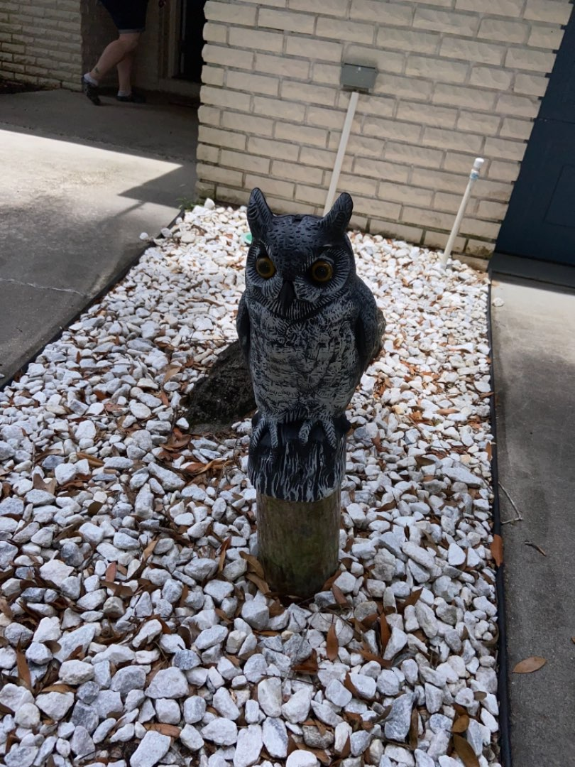 Lot # 311 Outdoor Owl on Pedestal