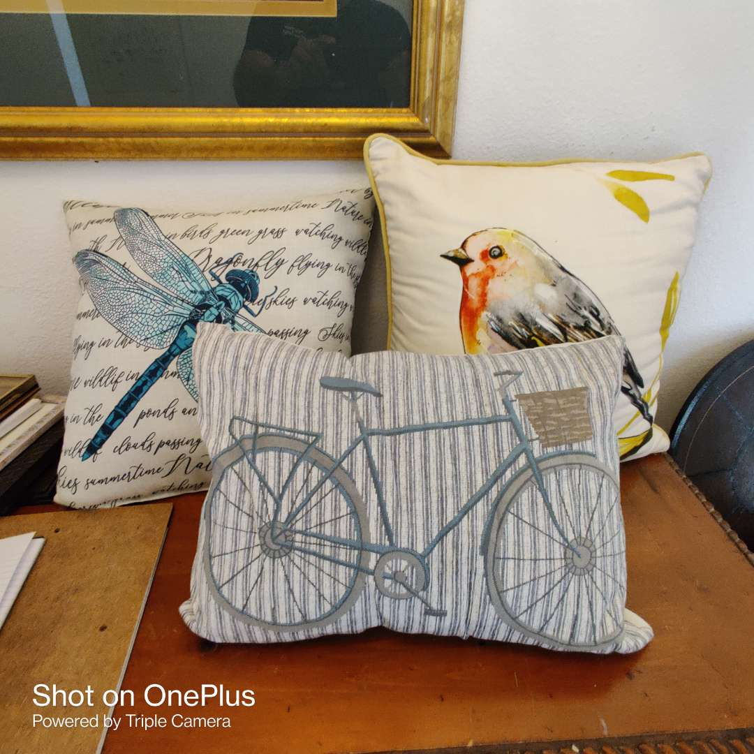60 three different pillows bird butterfly and bicycle