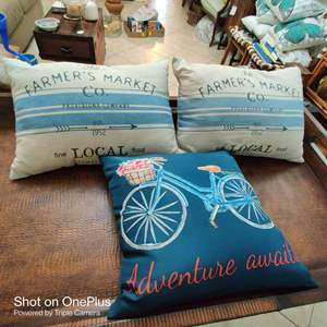 176 lot of three pillows Farmers market and bicycle