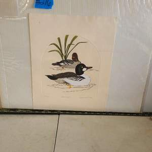 """Auction Thumbnail for: Lot # 276 """"Goldeneyes"""" Signed & Numbered Lithograph"""