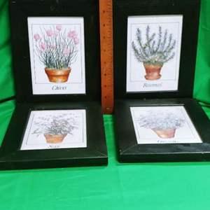 Lot #19 Wood Framed Herb Prints