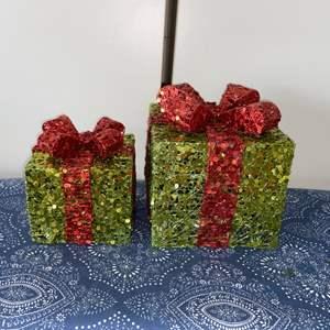 Lot # 7 Illuminated Christmas Decor (2)