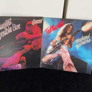 Lot # 54 Ted Nugent Records (2)
