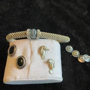 Lot # 270 Adorable Manatee Earrings & Fashion Jewelry