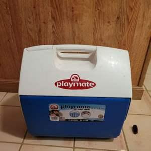 Lot # 80 Playmate Cooler