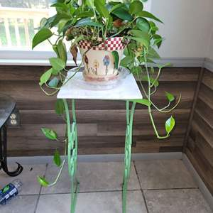 Lot # 160 House Plant in Pretty Planter & Stand