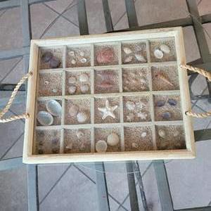 Lot # 173 Beautiful Seashell Tray