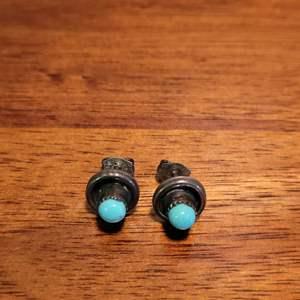 Lot # 497 Sterling Silver Earrings w/ Turquoise Stones