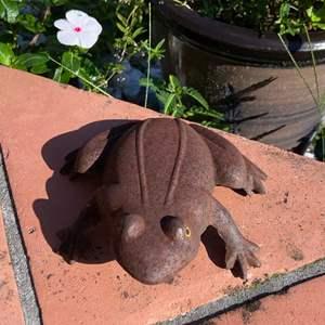 Lot # 799 Cast Iron Frog - Garden Bling!