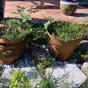 Lot # 807 (2) Flower Pots