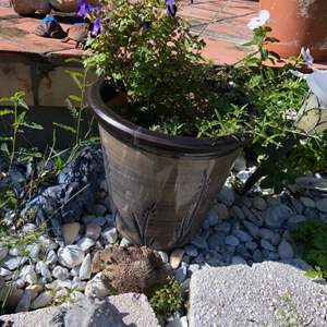 Lot # 814 Beautiful Flower Pot