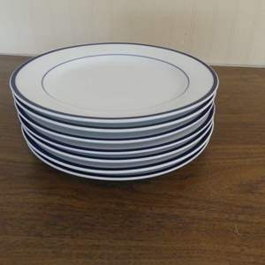 Lot #53 The Cellar Concentrics Blue Set of 7 Dinner Plates