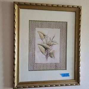 Lot # 28 Nicely Framed Plant Artwork  (artist Unknown)