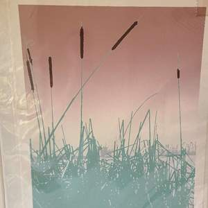 Lot # 258 Lot of Signed & Numbered Lithographs