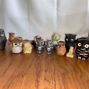 Lot # 322 Owl Fanciers Dream Package