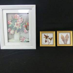 Lot #61 Botanical Shadow Boxes