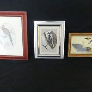 Lot #62 Avian Art including Wiiliam Jardine and W. Morgan (See Description)