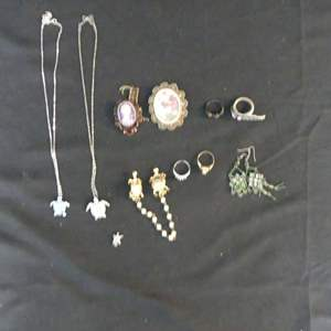 Lot #186 Turtle Necklace & Ring, Earrings, Brooch, Rings and Sweater Clasp
