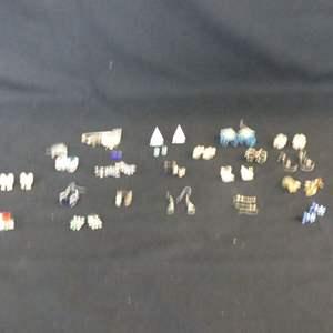 Lot #188 Earrings (Pierced), Brooch and Turtle Charm