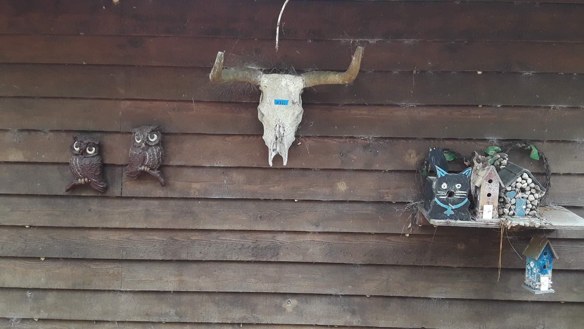 Lot # 366 OUTDOOR DECOR, BULL HORNS, BIRD HOUSES, OWL HANGINGS