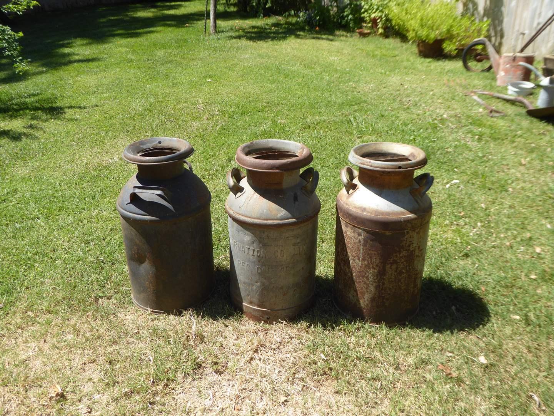 Lot # 404 - Three Vintage Galvanized Milk Cans  (main image)