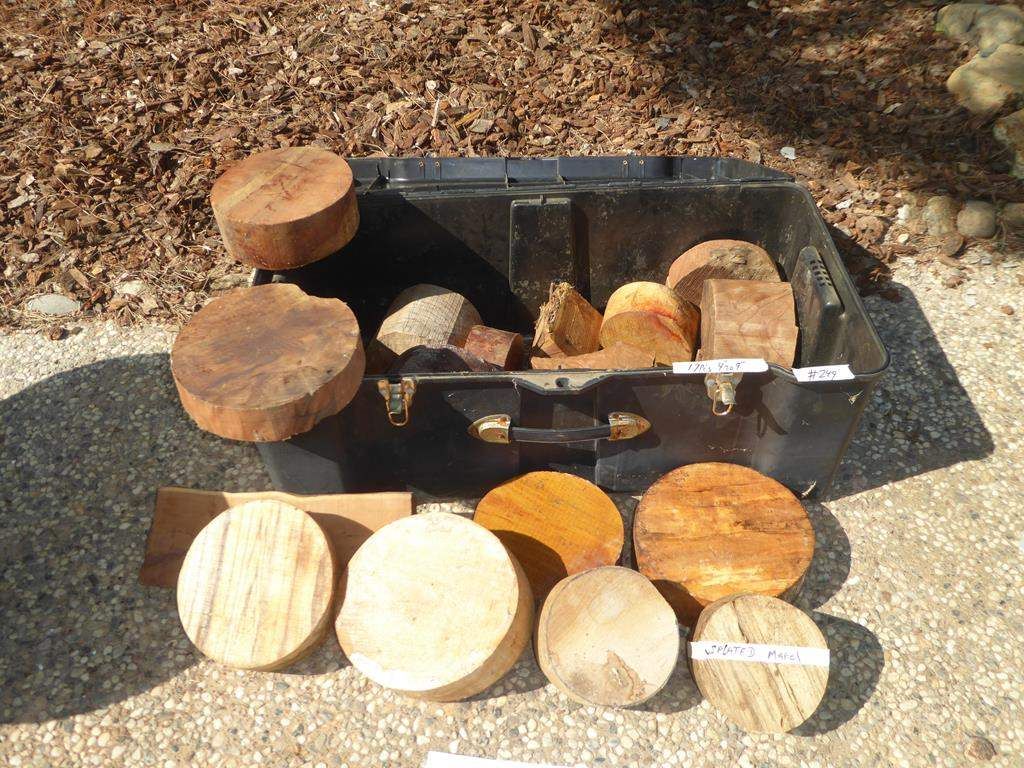 Lot # 249 - Assorted Wood Turning Blanks For Bowls  (main image)