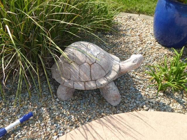 Lot # 28 - Heavy Cement Garden Turtle  (main image)